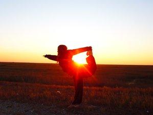 25 Days 200-Hour Yin Yoga 5 Bodies Approach in Ubud, Bali