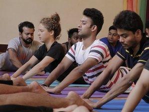 5 Day Chakra Awareness: Healing and Balancing - Yoga, Meditation Retreat in Goa