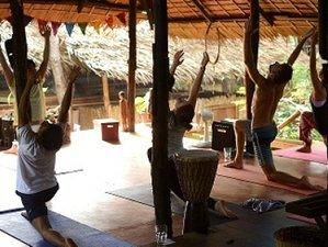 9 jours en stage ayurvéda pour se purifier à Puerto Princesa, Philippines