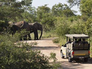 3 Days Classic Safari in Kruger Park, South Africa