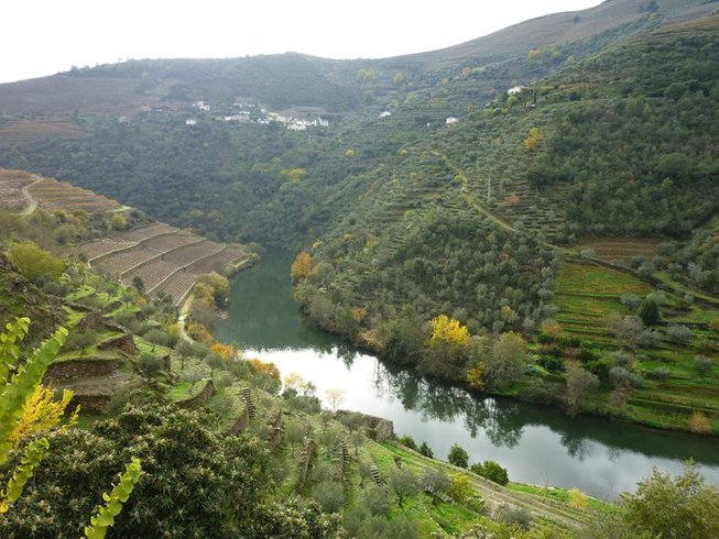 4 Days Txakoli Wine and Culinary Vacations Spain