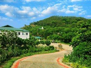 7 Days Ayurveda Yoga Detox Retreat in Himachal Pradesh, India