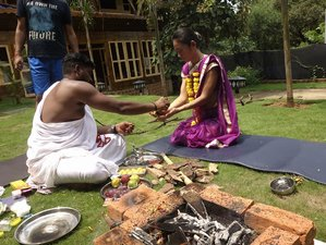 48 Days 500 Hours Vinyasa Yoga School-Teachers Training in Goa, India
