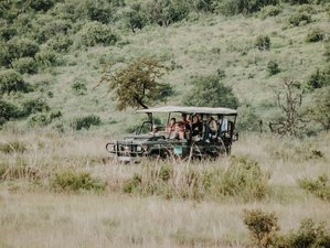 Plan: Safaris baratos