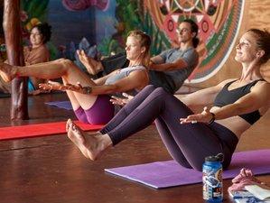 4 Day Living Love Yoga and Meditation Retreat in Saint Petersburg, Florida
