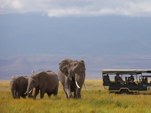 9 Days All Inclusive Kenya Safari