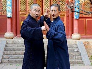 Self-Paced Shaolin Wu Bu Quan Online Course
