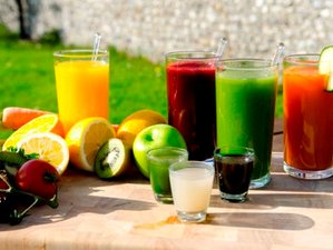 6 Day Private Juice Detox Retreat with Yoga at the Exclusive Belvoir Castle, Lincolnshire