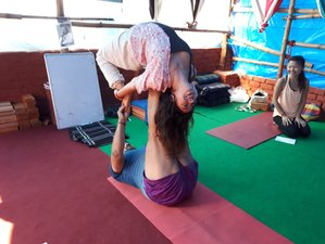 28 Days 200 Hours Yoga Teacher Training in Dharamsala, India