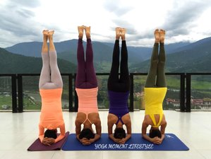 26 Day Best and Affordable 200-Hour Online Yoga Teacher Training