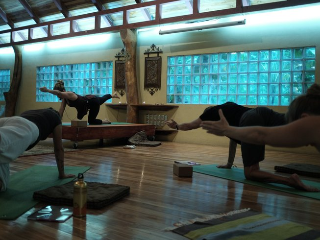 6 Days Yoga and Mindfulness Retreat in Nosara, Costa Rica