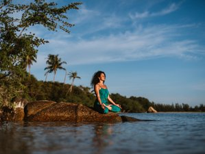 5 Day Online Vibrance Private Yoga Therapy and Wellness Retreat