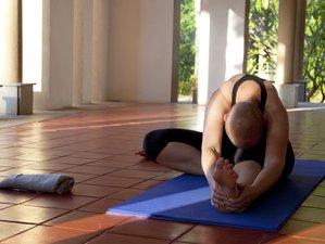 11-Daagse Ayurvedische Verjonging Meditatie en Yoga Retraite in Bangalore, India