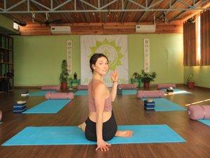 24 Days 200-Hour Online Yoga Teacher Training