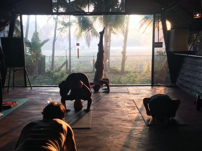 "7 Tage ""Happy Life"" Yoga und Meditations Urlaub in Kerala, Indien"