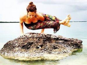 4-Daagse Luxe Yoga Retraite in Florida