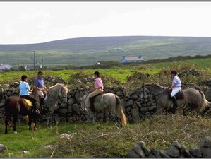 6 Day Irish Castle and Monastic Ruin Horse Riding Holiday in Whitegate, County Clare