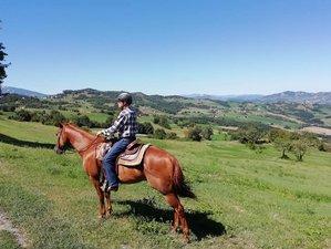 5 Days Fantastic Horse Riding in Emilia-Romagna, Italy
