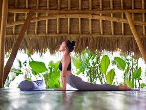 8 Day Bali Experience of Spa, Healing, and Yoga Holiday in Ubud and Seminyak, Bali
