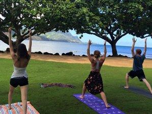 14 Days 200-Hour Yoga Teacher Training in Hawaii