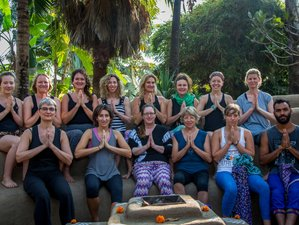 10 jours en stage de yoga Pure Bliss en Inde