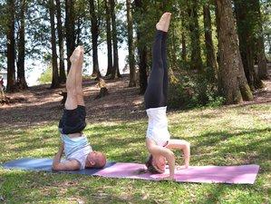 26 Days 200-Hour Vinyasa Flow Yoga Teacher Training in Brazil