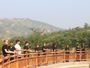 21 Days Tai Chi and Kung Fu Training in Shandong, China