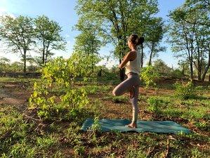 10 Day Yoga Safari Retreat in Selati Game Reserve
