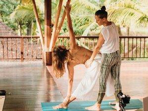Discover The Depth of Yoga Through Online 200-Hour Yoga Teacher Training