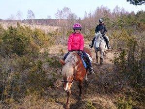 8 Days Irresistible Beginner Horse Riding Holiday in Muhu, Estonia