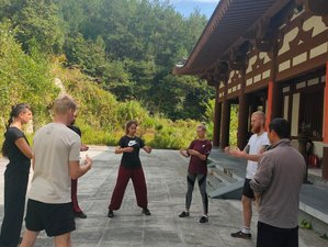 Self-Paced Low-Cost Online Qi Gong and Meditation Training