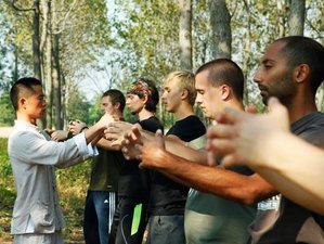 5 Years Sanda, Wing Chun & Kung Fu Training in China