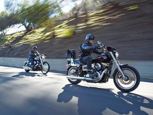 9 Day Harley-Davidson Self-guided Motorcycle Tour in Florida