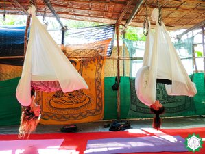 7 Days Aerial Yoga Teacher Training Dharamshala, India