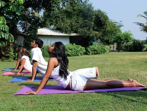 6 días retiro de yoga y spa en India