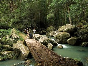 3 Days Luxury Trekking Exploration and Rain Forest Getaway in the Sunshine Coast in Australia