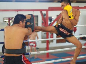 1 Month All Inclusive Muay Thai Training in Koh Phangan