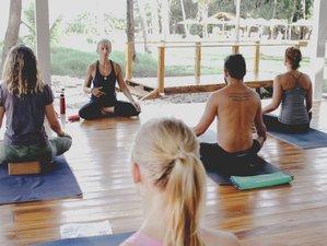 8 Day Beachfront Ashtanga Yoga Getaway in Playa Azul, Nicoya Peninsula
