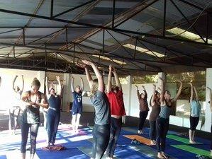 14 Day Acupuncture & Acupressure Treatment and Yoga Retreat in Kathmandu, Bagmati Pradesh