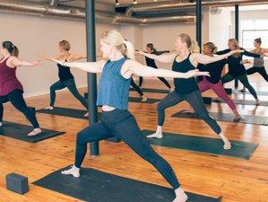 Self-Paced Online 100-Hour Yoga Teacher Training