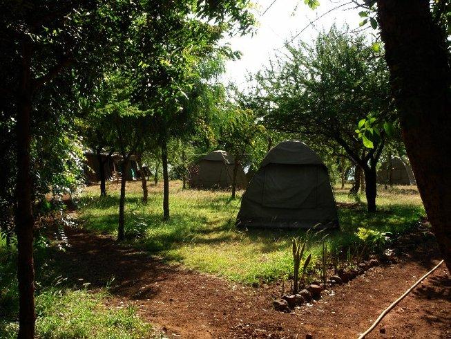9 Days Budget Safari in Tanzania