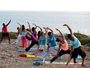 8 Day Your Dream Greek Yoga Retreat in Porto Buffalo, Evia island