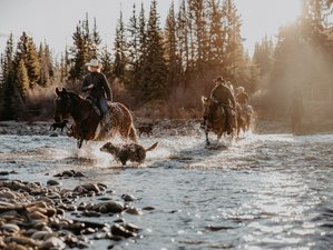 8 Day Horseback Adventure with Camp Stay in Beautiful British Columbia