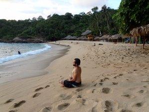 10 Days Detox, Meditation, and Yoga Retreat Mexico