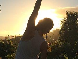 8 Days Balanced Practice Family Yoga Retreat in Savusavu, Fiji
