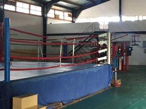 8 Days Boxing Training Camp in Havana, Cuba