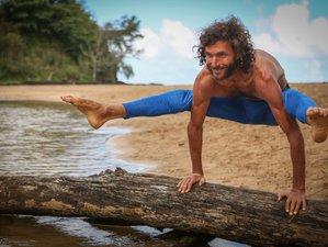 19 Days Transformative 200-Hour Yoga Teacher Training in Florida