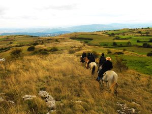 7 Day Carpe Diem Horse Riding Holiday in Isernia