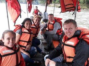 3 Day Wildlife Tour in Napo, Ecuador