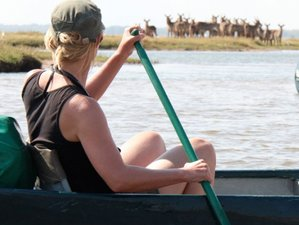 4 Days Camp Zambezi Safari in Mana Pools National Park, Zimbabwe
